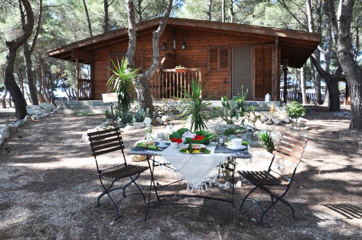 Vista Esterna - Cottage in Pineta