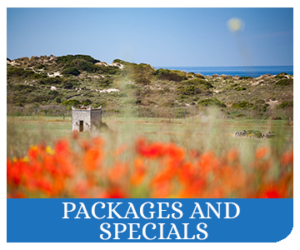 PACKAGES-AND-SPECIALS